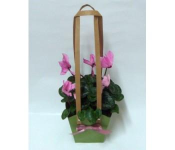 Цвете в торбичка